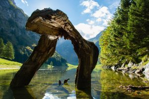 Switzerland Travel Inspiration