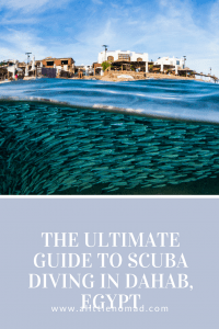 The Ultimate Guide To Scuba Diving in Dahab, Egypt #scuba #scubadiving #diving #egypt #dahab