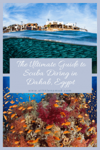 The Ultimate Guide To Scuba Diving in Dahab, Egypt