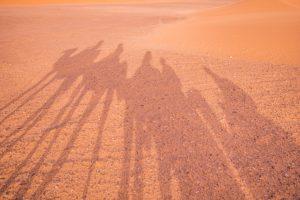 Morocco Travel Blog - Sahara Desert