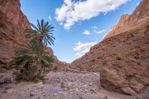 Morocco Travel Blog - Road Trip Photo Diary
