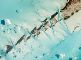 Best Snorkeling in Bahamas - Top 7 Snorkeling Spots