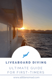 Liveaboard Diving Guide For First-Timers