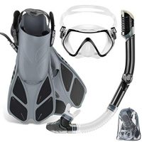ZEEPORTE Mask Fin Snorkel Set - Adult Snorkeling Gear with Panoramic View Diving Mask