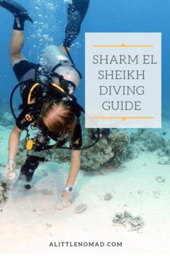 Sharm El Sheikh Diving Guide
